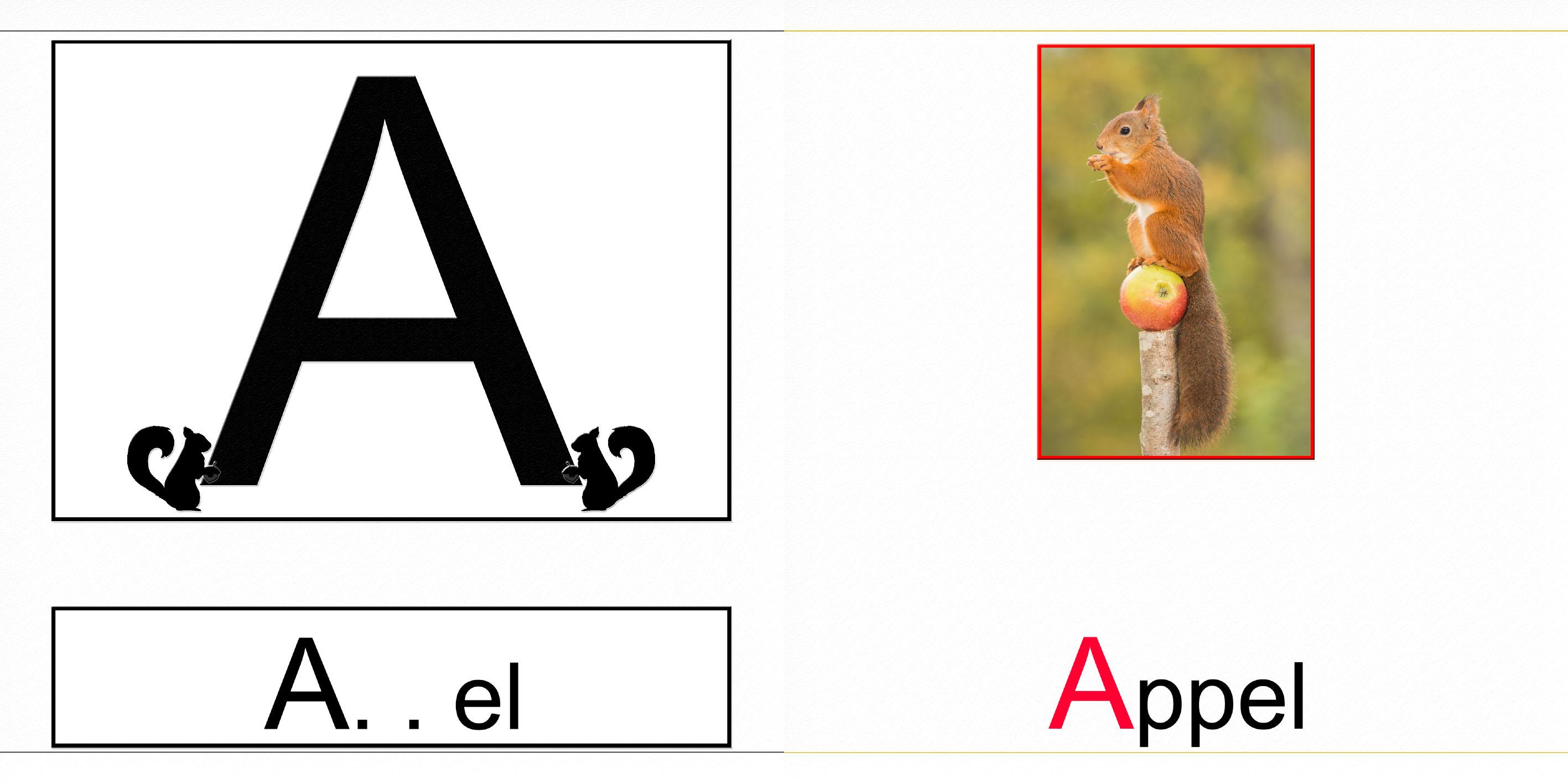 Samen met de eekhoorn het alfabet leren